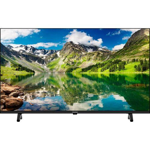 Grundig 40 VLE 5020 LED-Fernseher (100 cm/40 Zoll, Full HD), Energieeffizienzklasse A+