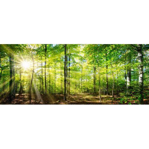 Marmony Infrarotheizung »Forest«, 800 W, 100x40x2 cm (B/T/H), grün