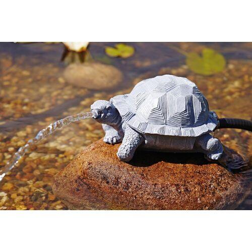 OASE Wasserspiel , Wasserspeier Schildkröte, grau