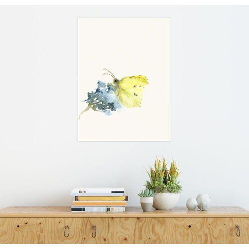 Posterlounge Wandbild - Dearpumpernickel »Zitronenfalter«, weiß
