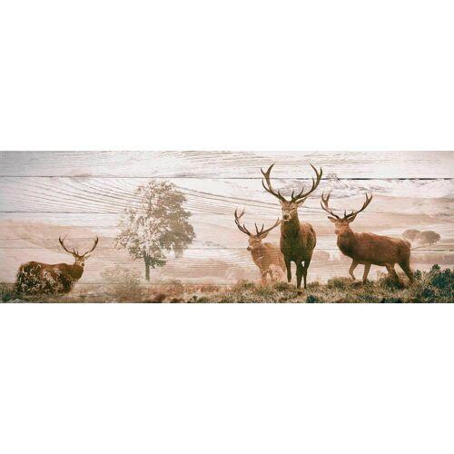 Deco-Panel »Hirsche«, 156/52 cm