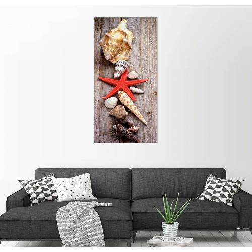 Posterlounge Wandbild »Muscheln auf Holzbrett«, bunt