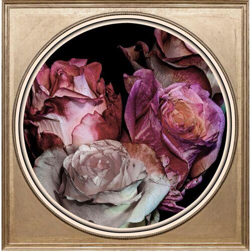 Acrylglasbild »Getrocknete Rosen«