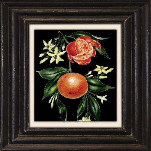 Holzbild »Mandarine«