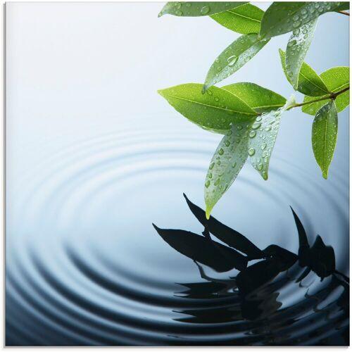 Artland Glasbild »Pflanze und Wasser«, Zen (1 Stück)