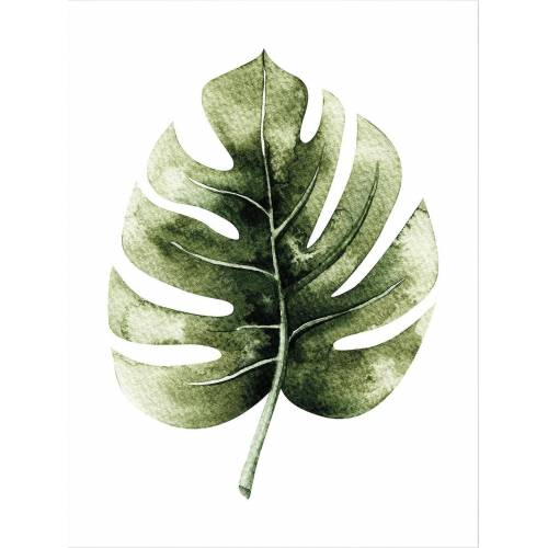 ART Wall-Art Poster »Kvilis - Monstera Leaf«