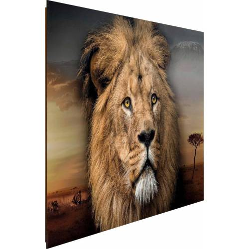 Deco-Panel »Löwenkopf«