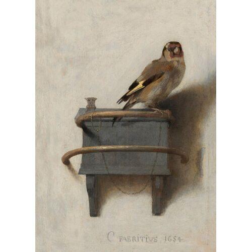 ART for the home Leinwandbild »Het puttertje«, Vögel