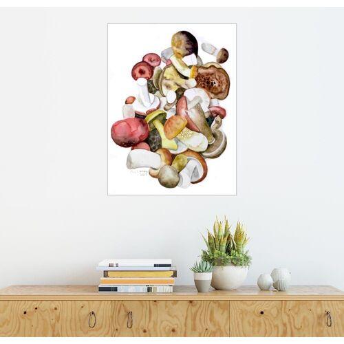 Posterlounge Wandbild, Pilze
