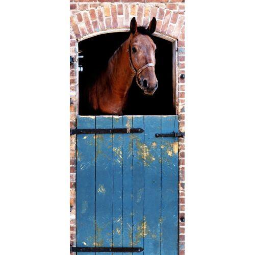Papermoon Fototapete »Horse - Türtapete«, matt, (2 St), BlueBack, 2 Bahnen, 90 x 200 cm