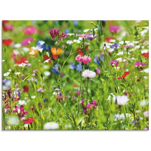 Artland Glasbild »Blumenwiese I«, Blumenwiese (1 Stück)