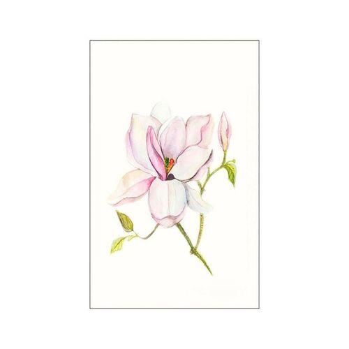 Komar Poster »Magnolia Shine«, Pflanzen, Blätter, Höhe: 70cm