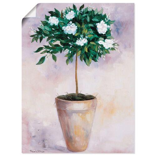 Artland Wandbild »Winterjasmin«, Pflanzen (1 Stück)
