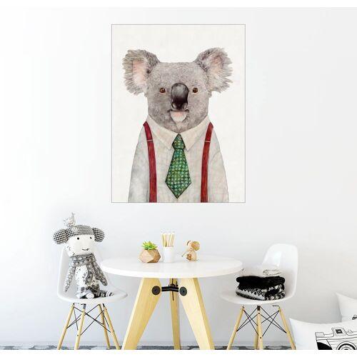 Posterlounge Wandbild, Koala