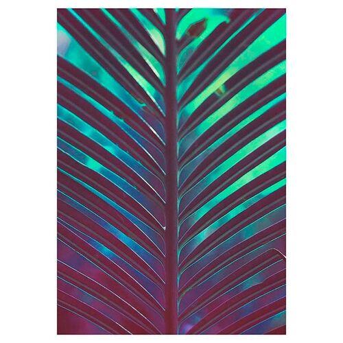 Komar Poster »Hide«, Pflanzen, Blätter, Höhe: 70cm