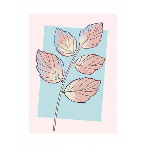 Komar XXL Poster »Cinderella Plant«, bunt