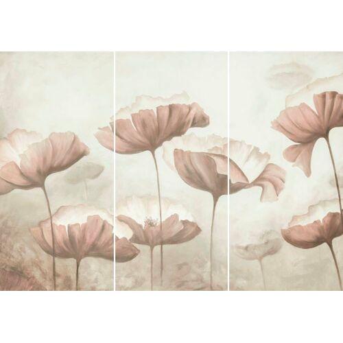 Wandbild »Mohnblumen - Wandbild«, (Set)