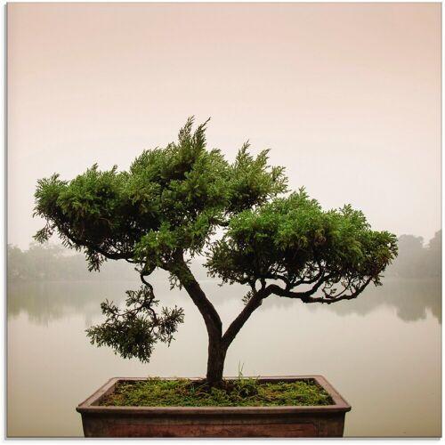 Artland Glasbild »Chinesischer Bonsaibaum«, Bäume (1 Stück)