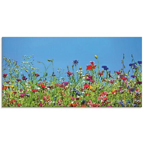 Artland Glasbild »Blumenwiese II«, Blumenwiese (1 Stück)