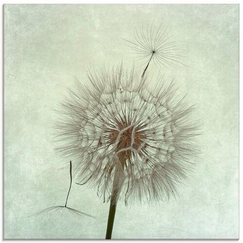 Artland Glasbild »Pusteblume II«, Blumen (1 Stück)