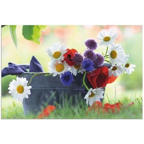 Artland Wandbild »Wildblumen des Sommers«, Blumen (1 Stück)