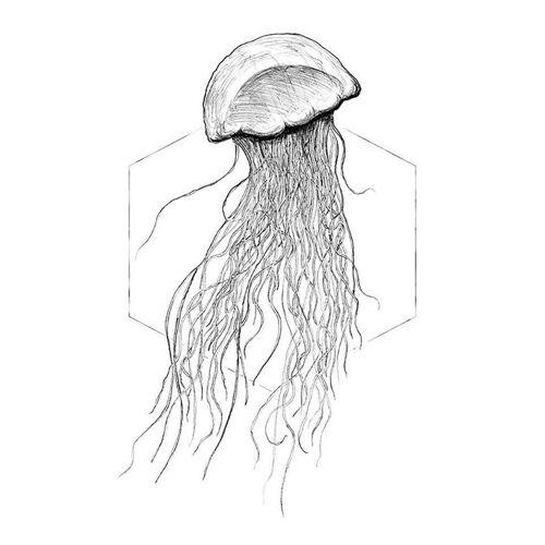 Komar XXL Poster »Jellyfish White«, bunt