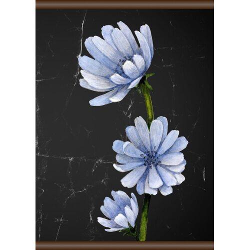 queence Leinwand »Blaue Blüte«, Leinwand Rollbild 50x70 cm, bunt