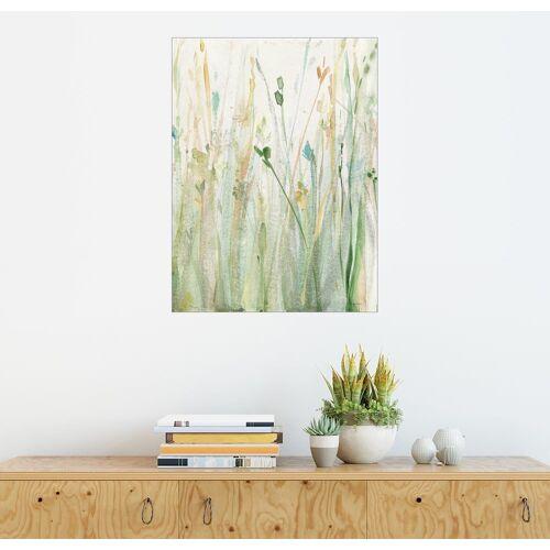 Posterlounge Wandbild, Frühlingsgräser II