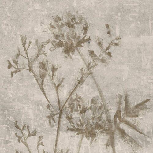 ART for the home Leinwandbild »Gepresste Blumen«, Blumen