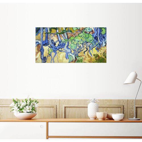 Posterlounge Wandbild, Baumwurzeln und Baumstämme