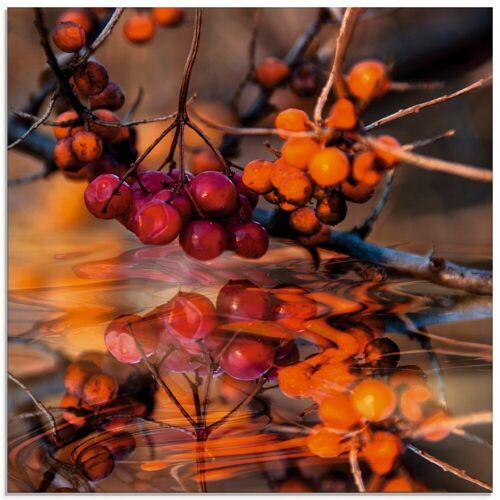Artland Glasbild »Rote Beeren - Wildbeeren«, Pflanzen (1 Stück)