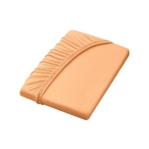 Dormisette Spannbettlaken, orange