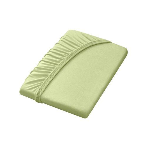 Dormisette Spannbettlaken, grün