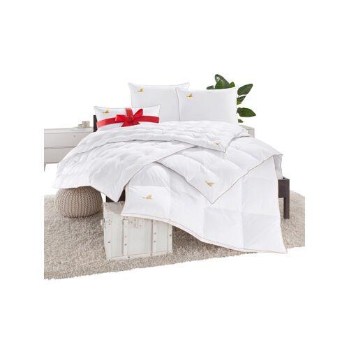OBB Bettenprogramm