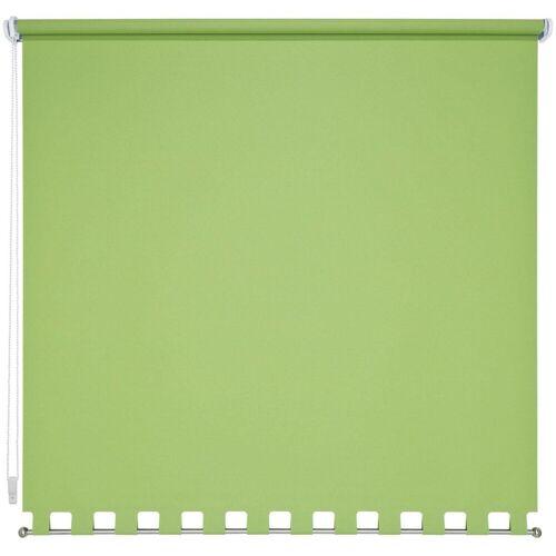 Liedeco Seitenzugrollo, , Lichtschutz, mit Bohren, Volantrollo - eckiger Volant, Fixmaß, grün
