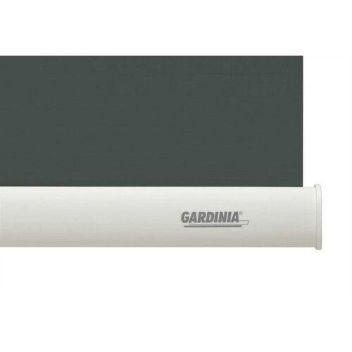 GARDINIA Seitenzugrollo »Seitenzug-Rollo ABDUNKLUNG 96 grau 82 x«,