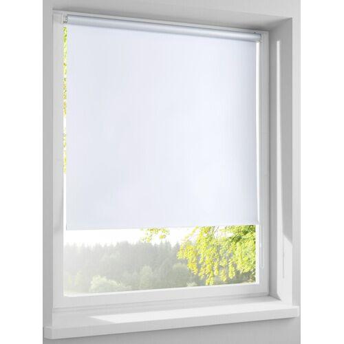 heine home Rollo als Licht- und Sichtschutz, weiß