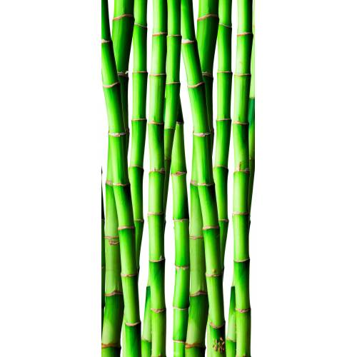 bella jolly Duschrückwand »Bambus«, (Packung)