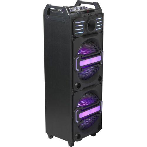 Denver Lautsprecher »DJS-3010 Lautsprecher«, Schwarz