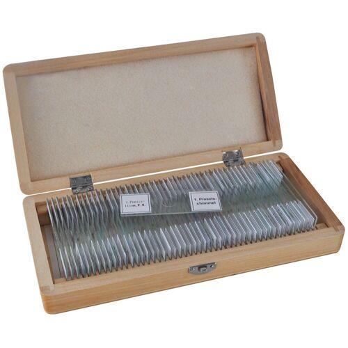 BRESSER Mikroskop »Dauerpräparate 50 Stück/Box«
