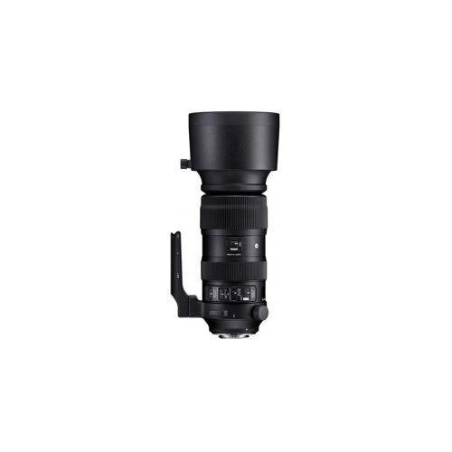 Sigma »60-600mm f4,5-6,3 DG OS HSM (S) Canon« Objektiv