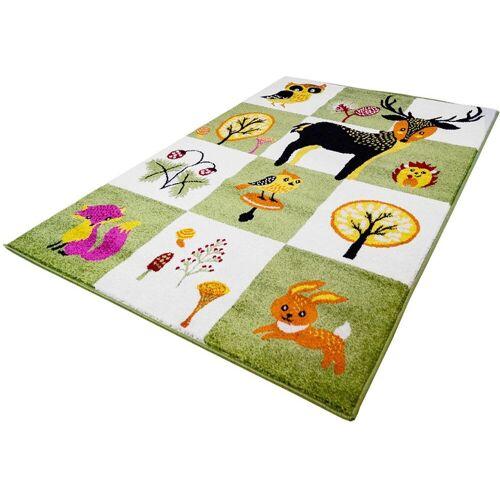 Carpet City Kinderteppich »Moda Kids 1510«, , rechteckig, Höhe 11 mm, Wald Tiere, Kurzflorteppich