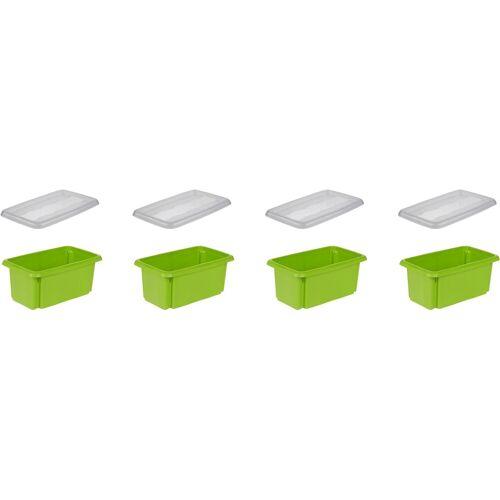 keeeper Aufbewahrungsbox »emil« (Set, 4 Stück), grün