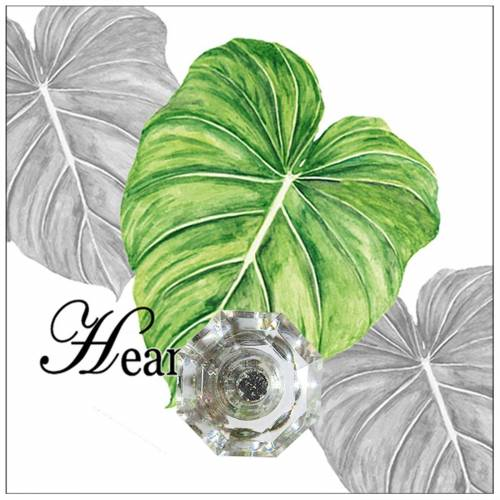 HTI-Line Wandhaken »Wandhaken Leaf«