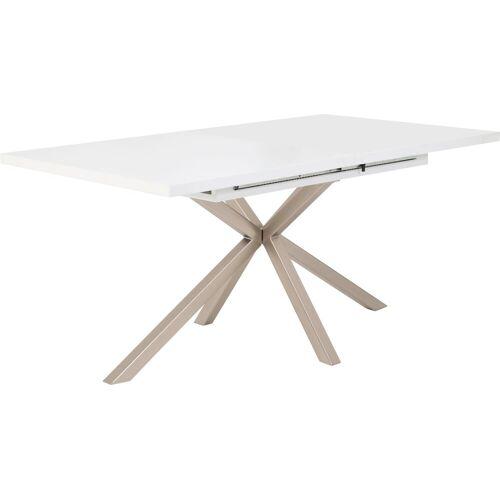 HELA Esstisch »MALOU«, Breite 160-200 cm, weiß-edelstahl