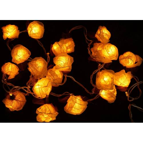 Guru-Shop LED-Lichterkette »Blüten LED Lichterkette 20 Stk. Rose - weiß«, weiß
