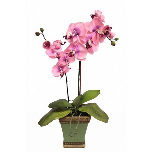 Kunstpflanze »Orchidee««