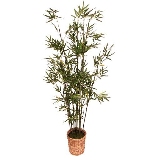 I.GE.A. Kunstpflanze »Bambus« Bambus, , Höhe 150 cm