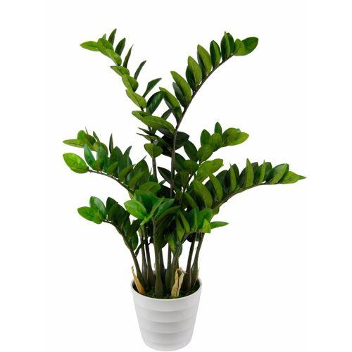 I.GE.A. Kunstpflanze »Tropenwurz« Tropenwurz, , Höhe 90 cm