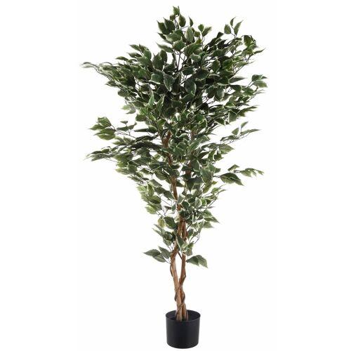 Creativ green Kunstpflanze »Ficus Benjamini« Ficus Benjamini, , Höhe 150 cm